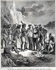 Scoperta del CHININO in Perù. Malaria. Farmacia. Storia della Medicina. 1880