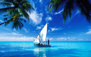 STAMPA SU TELA CANVAS MALDIVE ISOLE RELAX VACANZA PAESAGGIO MARE 60X100