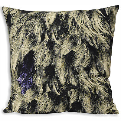 Paoletti Feathers Photographic Print Cushion Cover, Black/Grey, 55 x 55 Cm