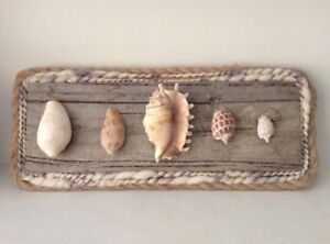 Handcrafted-by-Artist-Seashell-Art-on-Reclaimed-Wood-Mount-Unique-Home-Decor
