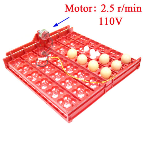 ✔ ✔ ✔ Automatic 144//36 Quail Egg Turner Tray with Motor 12-110 220 Volt ✔✔✔