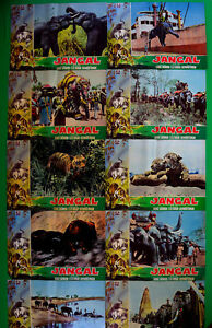H40 Lot Fotobusta Jangal George Sherwood Ellis Dungan Tarzan Dschungel Tiere