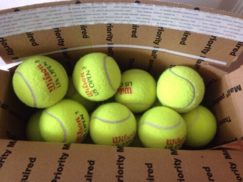 DOGS LUV THEM WOW 41 INDOOR USED TENNIS BALLS-GIFT FOR YOUR DOG