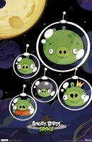 ANGRY BIRDS SPACE BIGS POSTER 22X34 NEW FREE SHIPPING