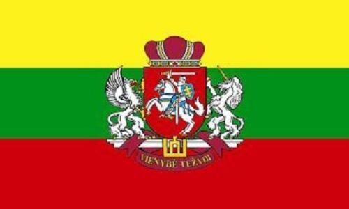 Fahne Flagge Litauen mit Wappen 20 x 30 cm Bootsflagge Premiumqualität