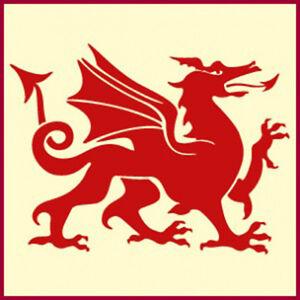 welsh dragon stencil dragon stencils the artful stencil ebay