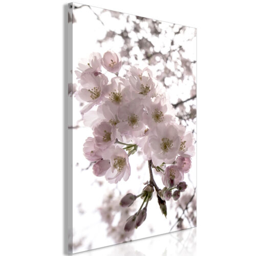 Blumen Vlies LEINWAND Deko Bilder XL Kirschblüte Wandbild Bild Wohnzimmer 2Motiv