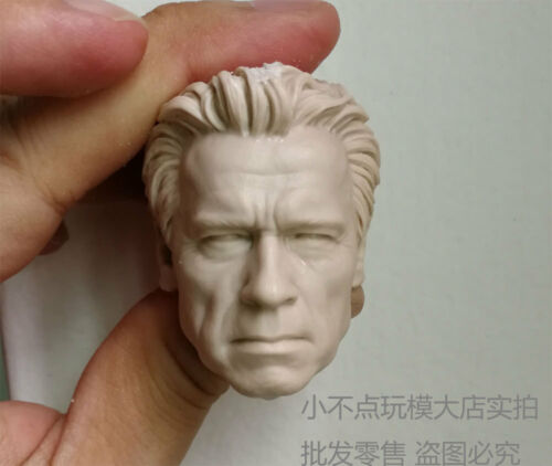 Free Ship 1//6 head sculpt Terminator Genisys T800 Guardian Arnold Schwarzenegger