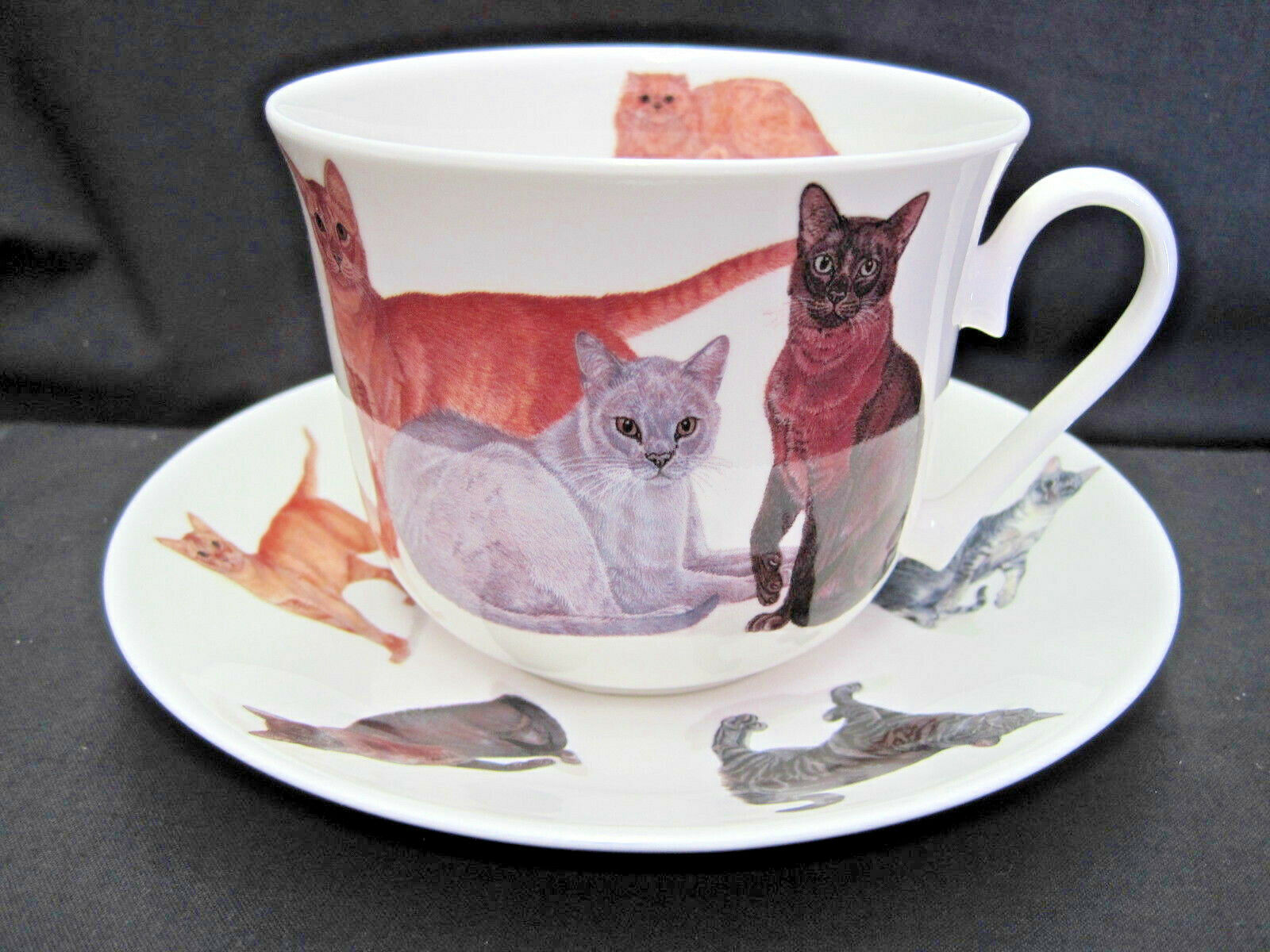 CATS GALORE, FINE BONE CHINA BREAKFAST CUP SAUCER, ROY KIRKHAM, MADE IN  ENGLAND