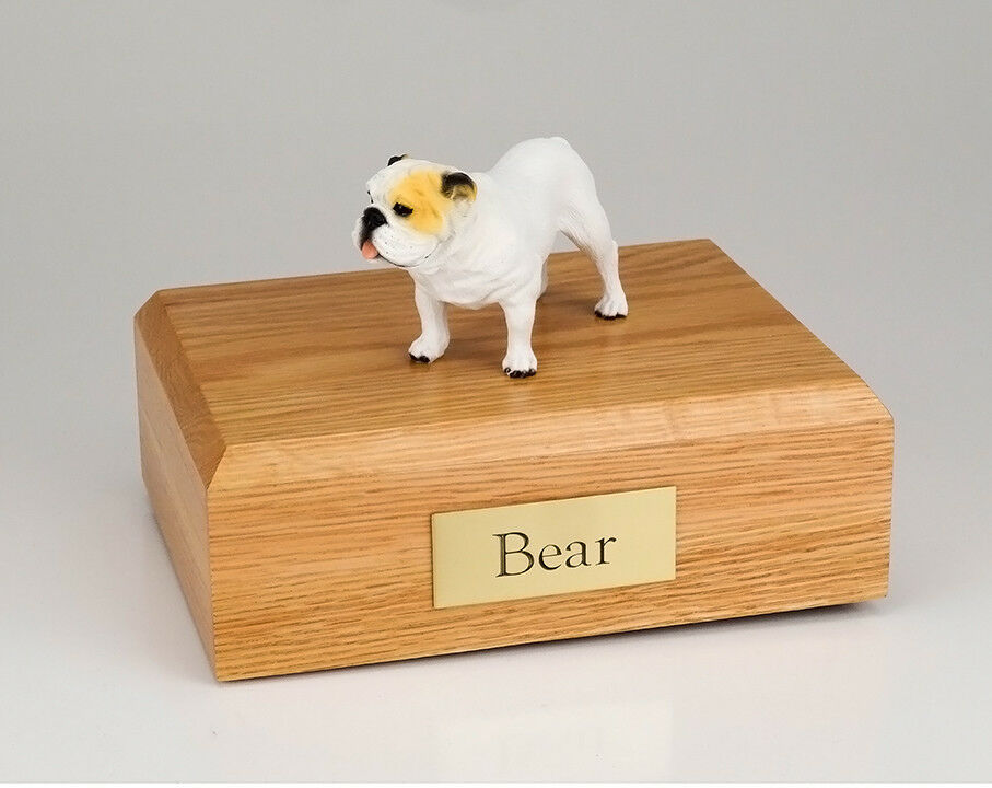 Bulldog, bianca Pet Funeral Cremation Urn Avail in 3 Different Colores  4 Dimensiones
