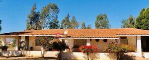 Para inversión Valle de Guadalupe Ensenada Viñedos