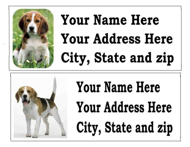 120 beagle dog pet return address labels ebay
