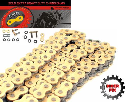 ZX900 F1-F2 Kawasaki ZX-9R Ninja 02-03 Gold Extra Heavy Duty X-Ring Chain