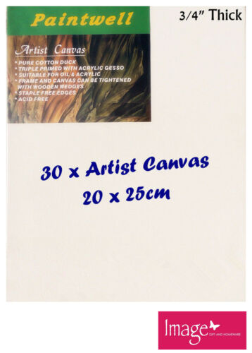 "30pcs Paintwell Artist Stretched Canvas 8x10"" 34"" Thick 330gsm SCS0810"