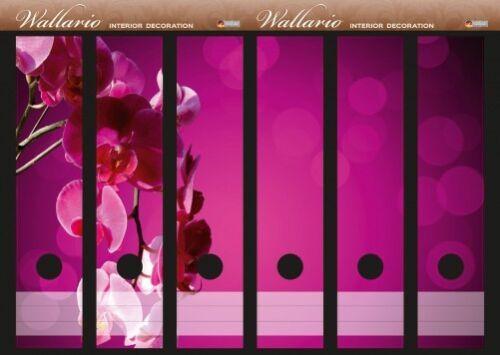 Orchidee Blüten pink Wallario Ordnerrücken selbstklebend für 6 breite Ordner