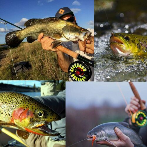 Maxcatch Japanese Fluorocarbon Fly Fishing Tippet Line 50M 1X 2X 3X 4X 5X 6X
