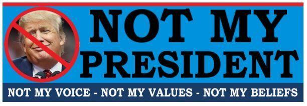 Not my president anti trump political bumper sticker