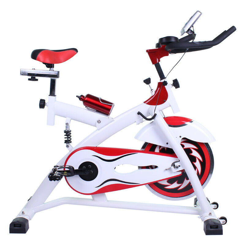Bici de spinning con volante de inercia de 24 Kg y amortiguador DBT-D-07 + comba