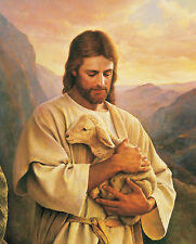 JESUS HOLDING A LITTLE LAMB 8X10 PHOTO PICTURE CHRISTIAN ART