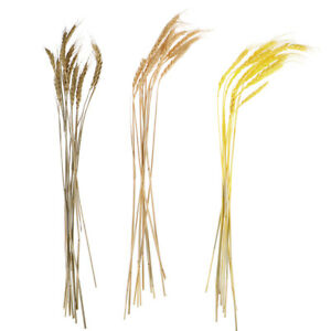 Artificial-Wheat-Ears-Natural-Dried-for-Wedding-Party-Decor-DIY-Home-Decorat-fc