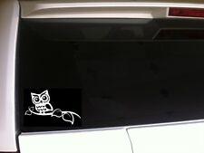 """Owl On A Branch Car Decal Vinyl Sticker 6"""" *E87 Bird Laptop Owls Gift Hoot Barn"""