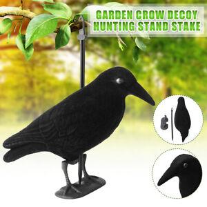 Garden-Flocked-Hard-Plastic-Flambeau-jet-black-Crow-Decoy-Hunting-Stand-Stake-US