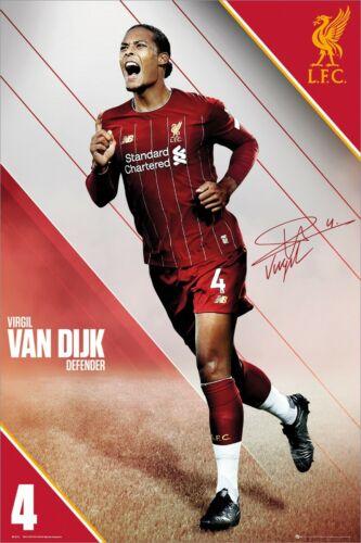 Liverpool FC Liverpool Van Dijk 19-20 Maxi Poster 61 x 91,5 cm