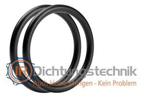 20 Stück O-Ring O-Ringe 22 x 3 mm DIN 3601 Viton FPM FKM 75 Neu