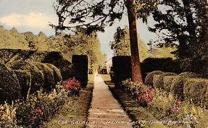 R297676 The Gardens. Polesden Lacey. Great Bookham. Frith. No. 8