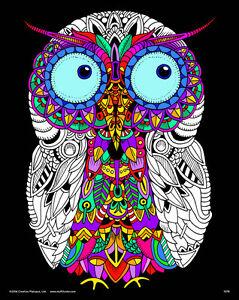Owl - Large 16x20 Inch Fuzzy Velvet Coloring Poster | eBay