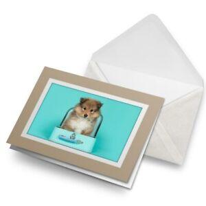 Greetings-Card-Biege-Shetland-Sheepdog-Puppy-Collie-21428