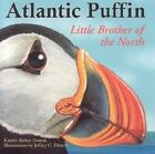 Atlantic Puffin: Little Brother of the North by Kristin Bieber Domm (Paperback / softback)