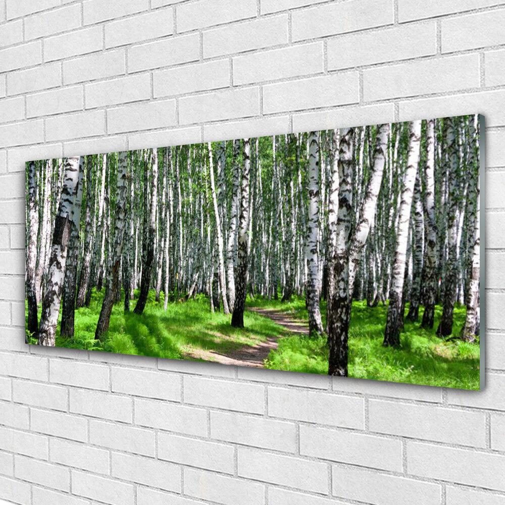 Impression sur verre Image tableaux 125x50 Nature Arbres Herbe