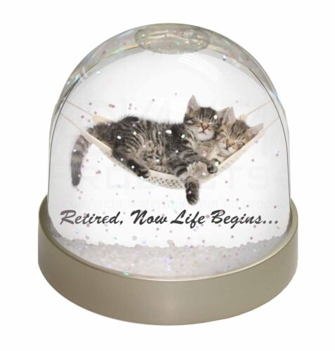 AC-RET206GL Cats in Hammock Retirement Gift Photo Snow Globe Waterball Stocking