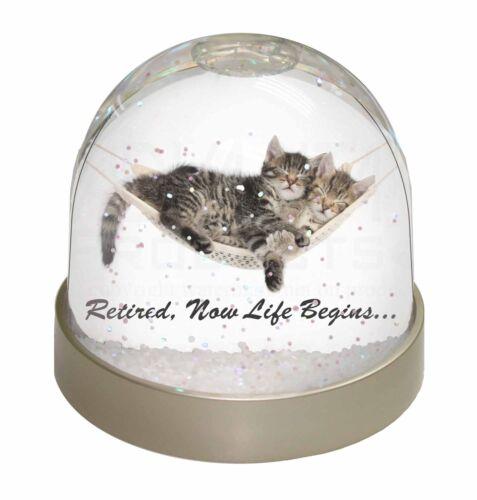AC-RET206GL Cats in Hammock Retirement Gift Photo Snow Globe Waterball Stocking