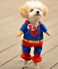 FD1869 Fancy Pet Cat Dog Puppy Cotton Clothes Costume Superman Suit size ~XS~