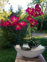 Neu sehr edles Gesteck Orchidee weiss/fuchsia Tisch-Deko Fensterschmuck