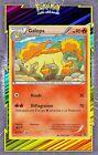 🌈Galopa - XY11:Offensive Vapeur - 17/114 - Carte Pokemon Neuve Française