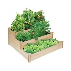 Raised garden bed gardening vegetable kit greenhouse cedar elevated home new Keter easy grow elevated flower garden planter