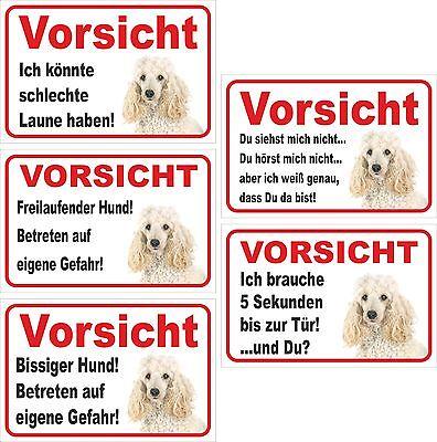 Weißer Pudel Humor Schild Vorsicht Versch Texte 15x20-40x60cm Hund Husten Heilen Und Auswurf Erleichtern Und Heiserkeit Lindern