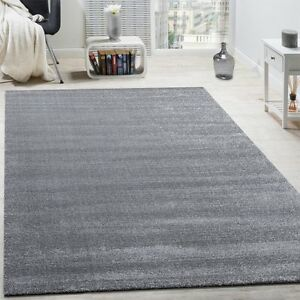 Plain Grey Rug Glitter Silver Living