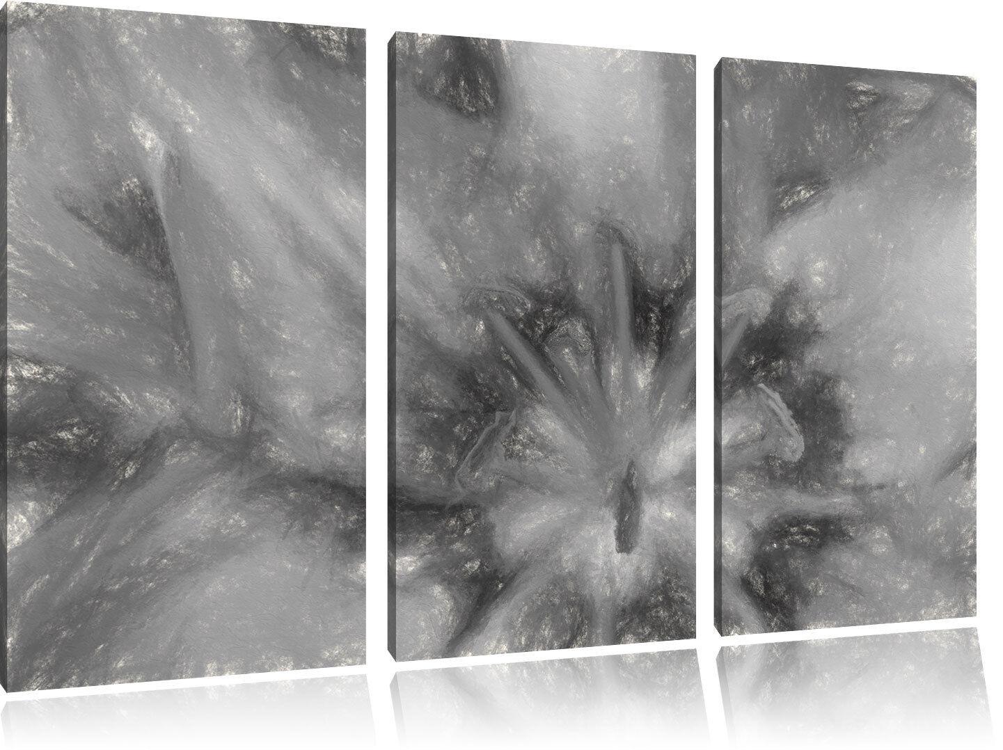 Hermoso Lirio Primer Plano Arte Arte Arte Carbón Efecto 3-Teiler Foto en Lienzo 42d85b