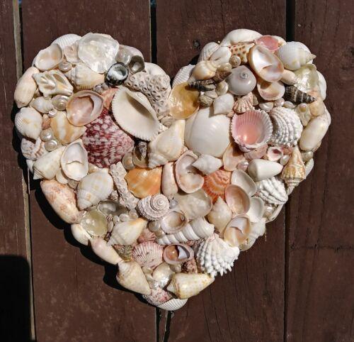 Shelled Heart in Natural Sea Shells BEAUTIFUL Coastal Wedding Decor Heather MBC