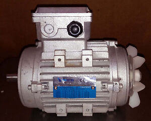 Details about 1 NEW NERI MOTORI MR80A0002 80B-4 ASYNCHRONOUS ELECTRIC MOTOR  IP55 ***MAKE OFFER