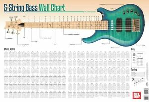 Image Is Loading 5 String Bass Guitar Wall Chart LEARN TO