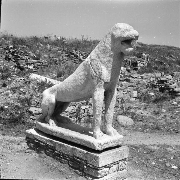 Intelligent DÉlos C. 1960 - Vestiges Site Archéologique Grèce - 10 Négatifs 6 X 6 - Gre 174 Prix De Vente