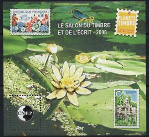 Timbre France Bloc Cnep N°51 Neuf** Salon Du Timbre Et Des écrit De Paris 2008 Peut êTre à Plusieurs Reprises Replié.