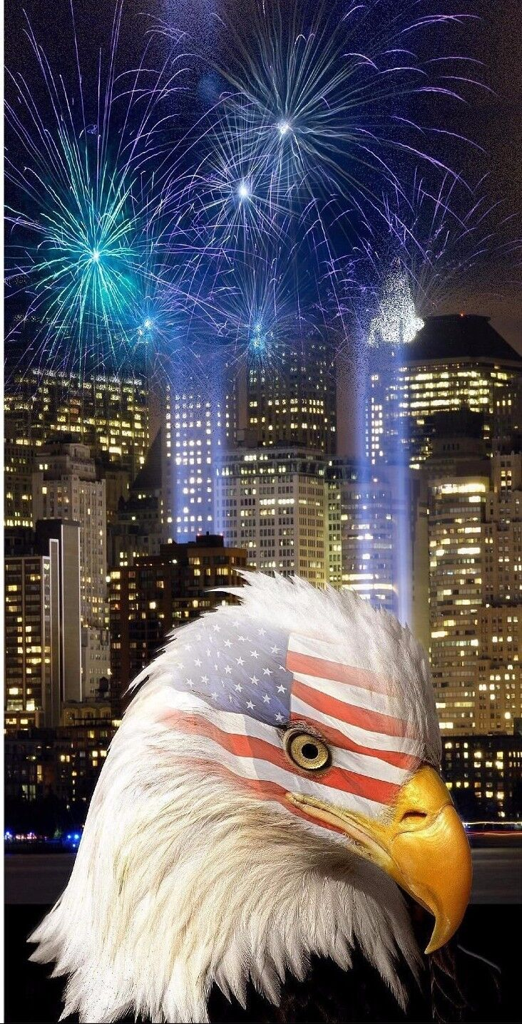 Flag Eagle NY Twin Towers Fireworks Cornhole Bean Bag Toss 3M Vinyl Wrap Set