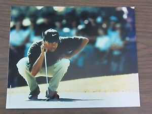 1997-Topps-Tiger-Woods-8-x-10-Photo-1996-Greater-Milwaukee-Open