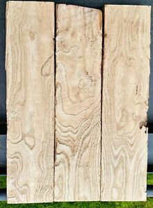 Burl-Figured-Swamp-Ash-3-pc-Unglued-set-20-x-13-5x-1-9-Chaos-Grain-Tele-Strat